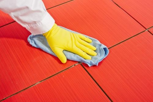 Grout Cleaning Delahey