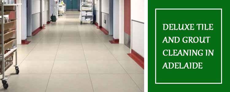 Deluxe Tile & Grout Cleaning Adelaide
