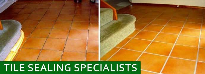 Tile Sealing Specialists  Hilldene