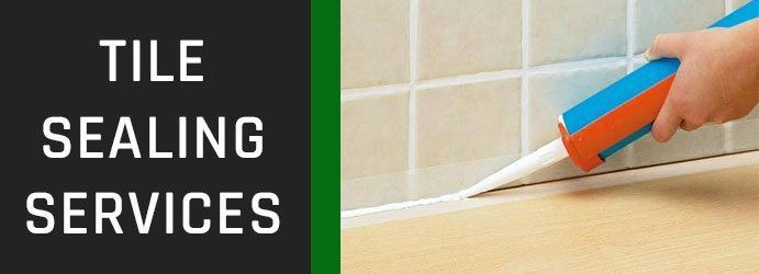 Tile Sealing Services in Baskerville