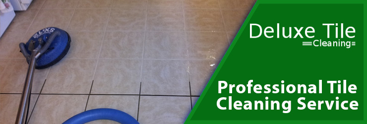 Professional Tile Cleaning Service